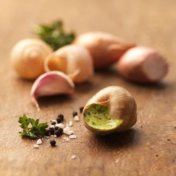 Bourgogne Escargots, escargots sur table