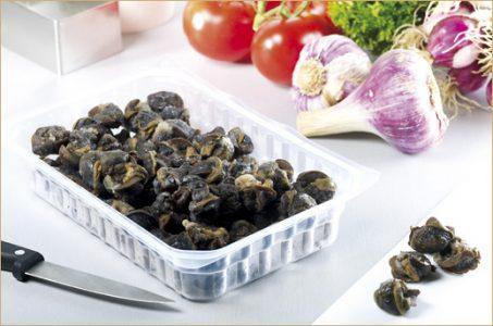 Produits Bourgogne Escargots : escargots